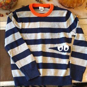 Boy's Fun Gap Sweater